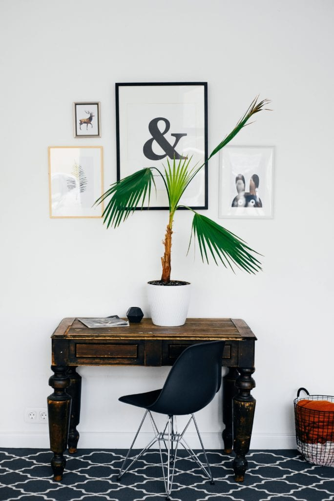 Indoor Bonsai – Floral Décor For Your House And Office